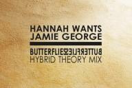 hybrid theory butterflies